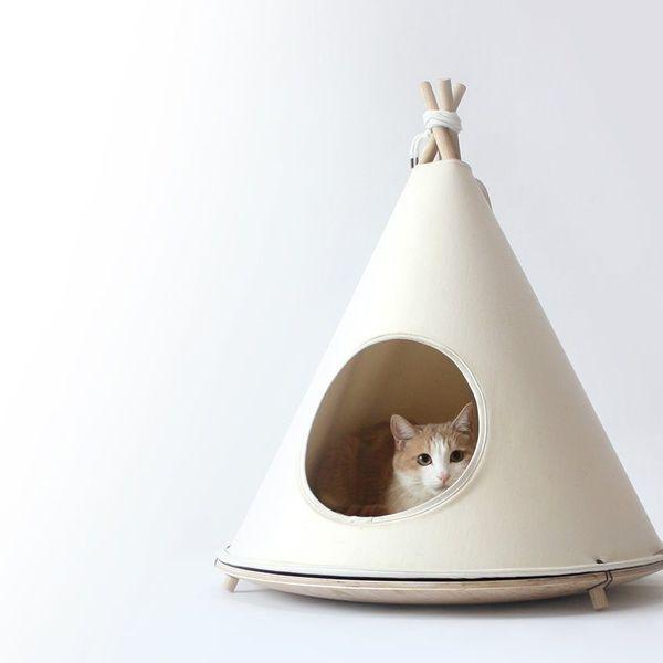 Choco Tent
