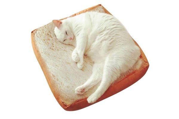 Gefry Creative Toast Pet Mat