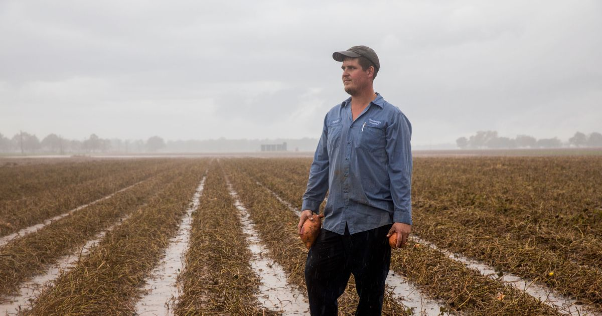 The Farmer Struggling to Recover After Hurricane Harvey Destroyed Everything