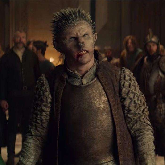 Bart Edwards as Duny in Netflix's The Witcher.
