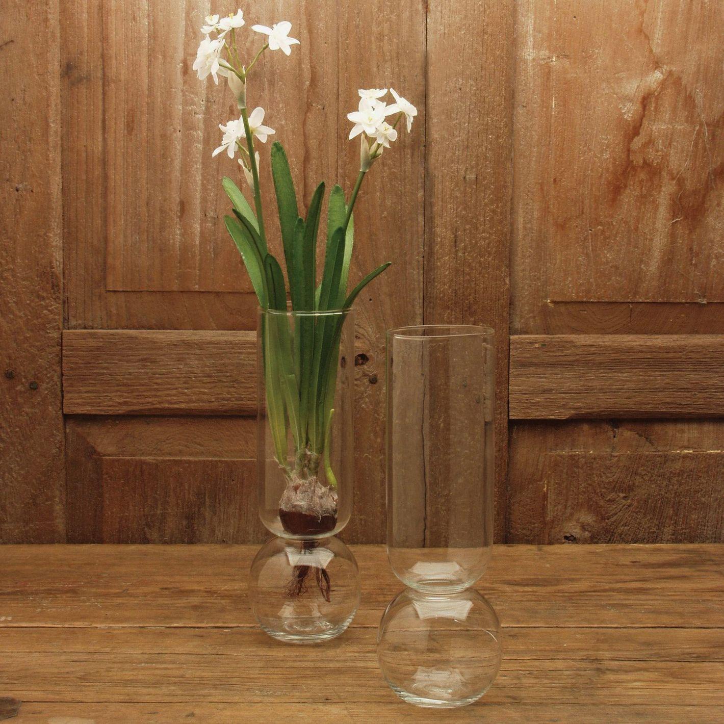 HomArt Glass Bulb Vase, Tall