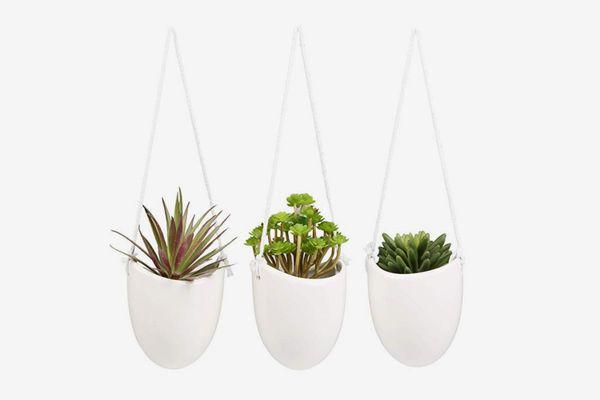 Modern Ceramic Succulent Plant Pots,