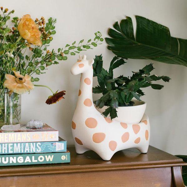 Giraffe Savannah Garden Pot by Justina Blakeney