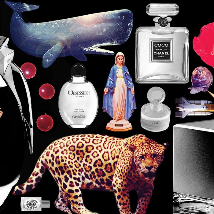 7 Strange Ingredients That Might Be In Your Perfume