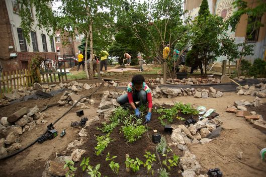 Volunteers and teenagers from local schools help renovate an out of use community garden in East New York, Brooklyn as part of a community service project organized by Slow Food NYC.
