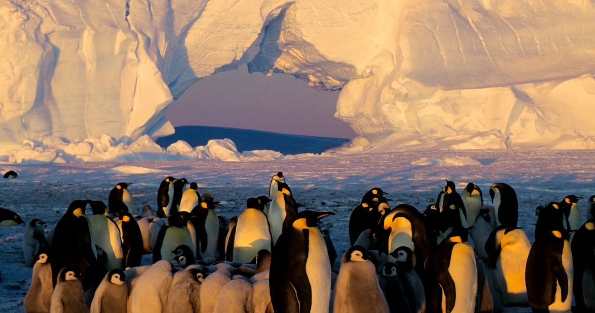 Antarctica Is Hotter Than Ever