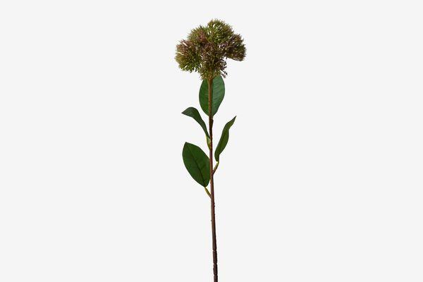 Terrain Faux-Carnation Buds