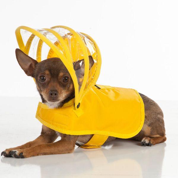 Push Pushi Dog Raincoat