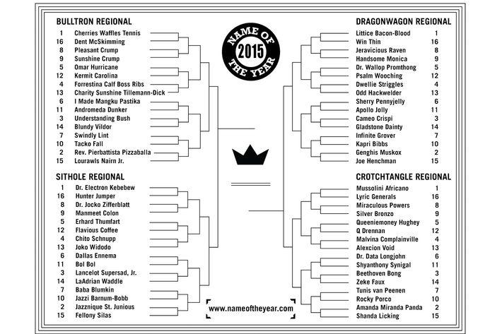 Cherries Waffles Tennis or Amanda Miranda Panda: Who Will Win the 2015 Name of the Year Award?