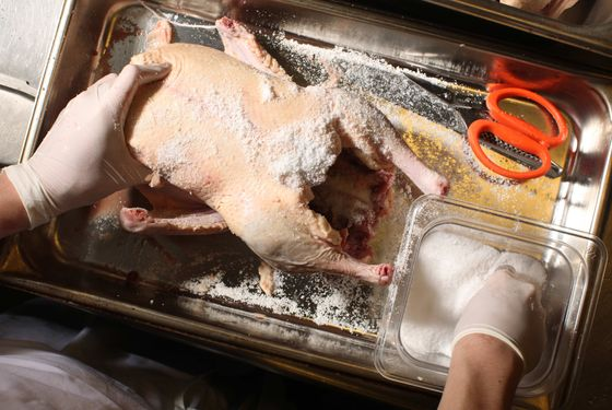 Salting the duck.