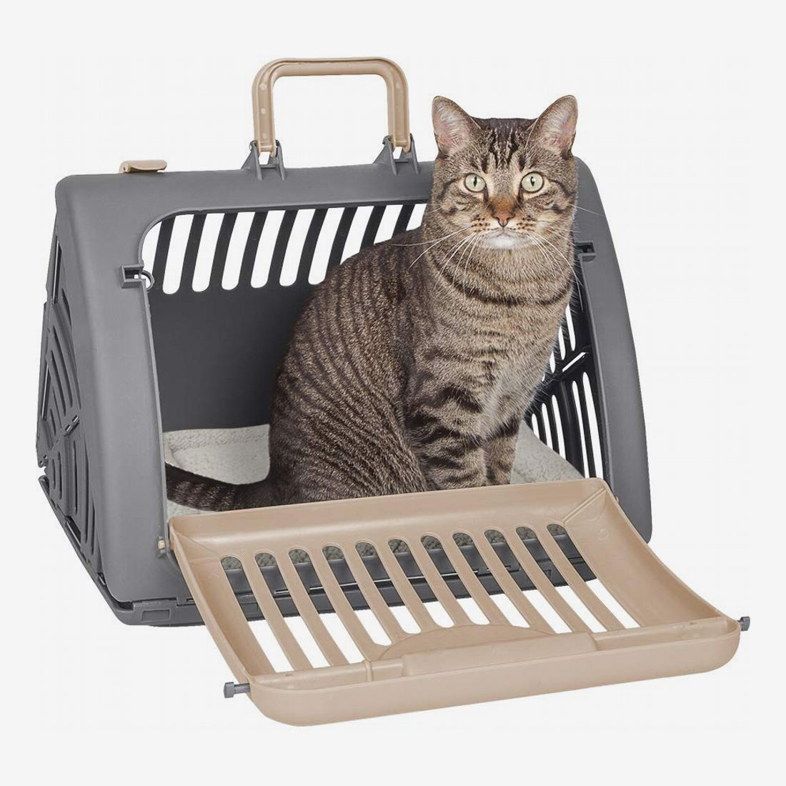 Picture of: 11 Best Cat Carriers 2020 The Strategist New York Magazine