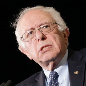 Democratic Presidential Candidate Bernie Sanders Campaigns In Western Massachusetts