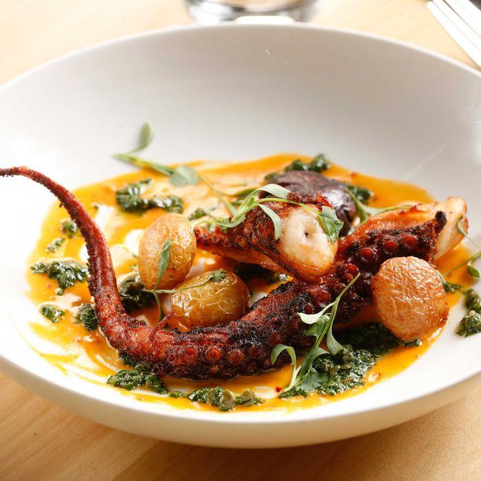 Spanish octopus, 'nduja, vinegar potatoes, and cilantro.