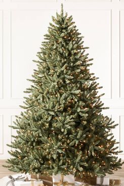 Balsam Hill Classic Blue-Spruce Artificial Christmas Tree
