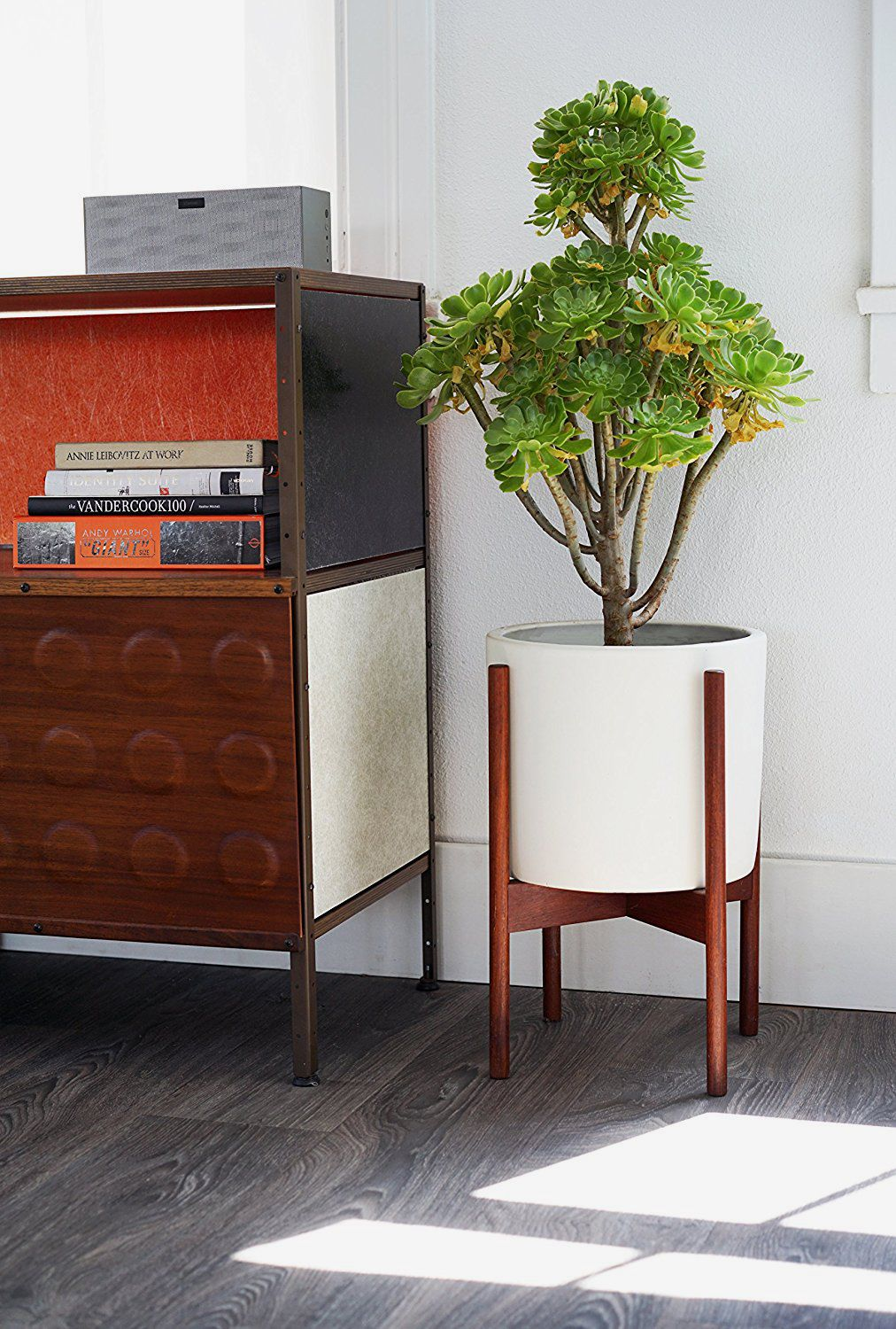 Modernica Case Study Ceramic Planter With Wood Stand — Small — White
