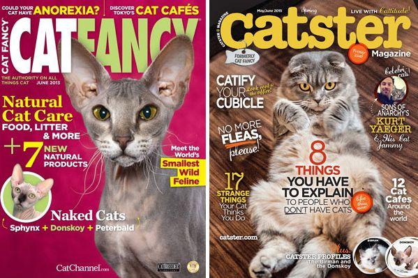 2b0d61cf3a Who Killed  i Cat Fancy  i