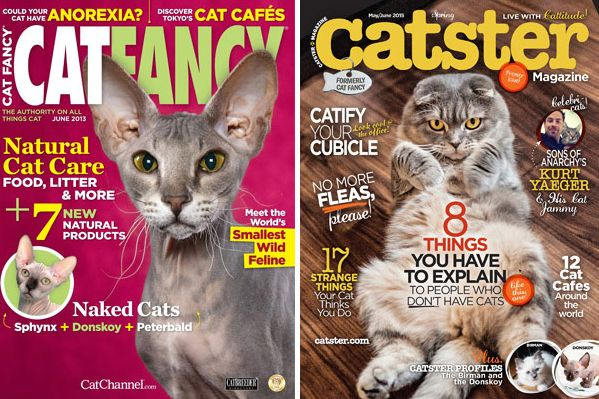 Who Killed  lt i gt Cat Fancy lt  i gt   About two weeks ago  longtime Cat Fancy contributor Audrey Pavia got a phone call from the pet magazine     s editor  Susan Logan