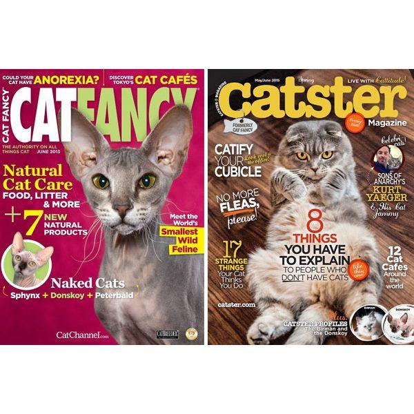 a45345eaae Who Killed  i Cat Fancy  i