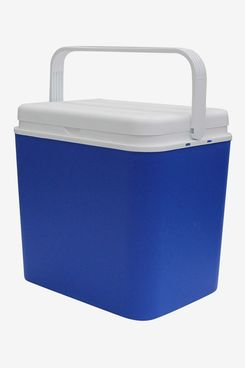 Insulated Cooler Box (10 Litre)
