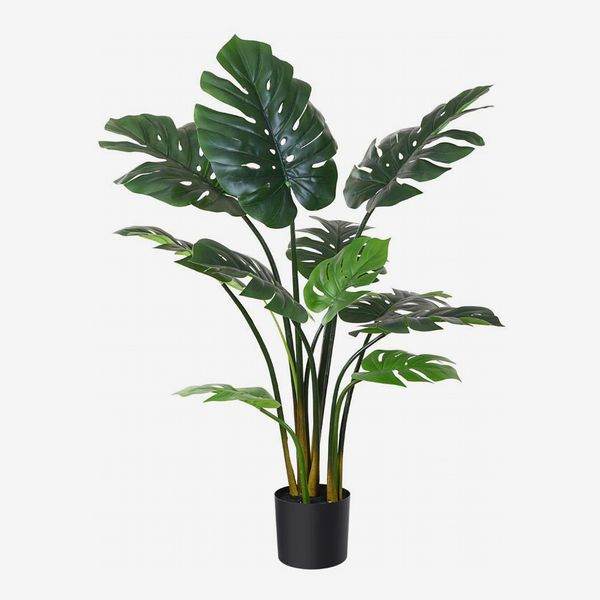 34 Best Artificial Plants 2021 The Strategist New York Magazine