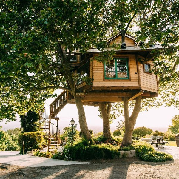 Tree House in San Jose, California