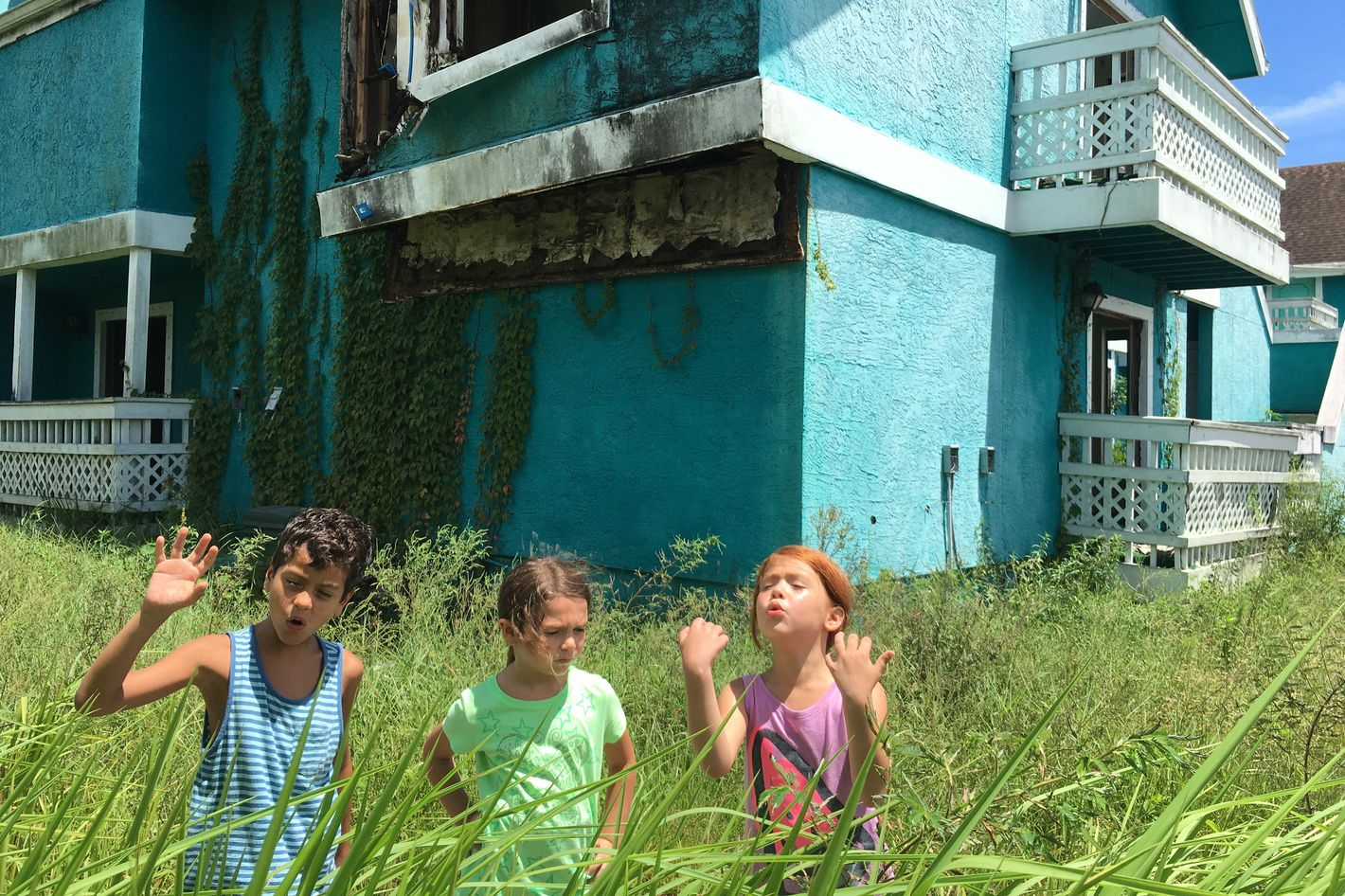Image result for the florida project stills