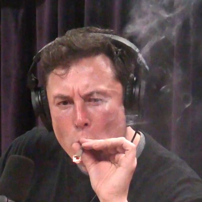 Elon Musk taking a hit.