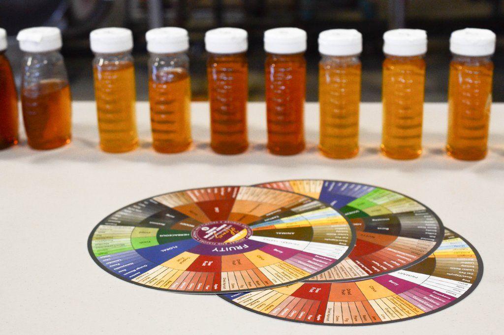 Old Blue Raw Honey Ultimate Varietal Honey Sampler