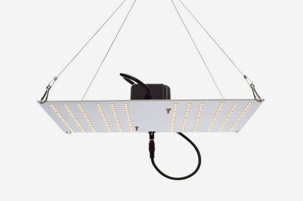 HLG 100 LED 100W Quantum Board