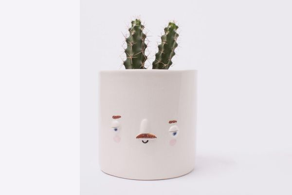 Friend Assembly Medium Keith Face Planter