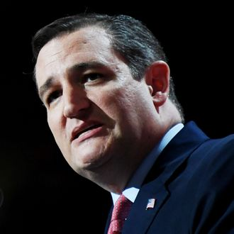 US Senetor Ted Cruz speaks on stage at the Republican National Convention at the Quicken Loans Arena in Cleveland, Ohio on July 20, 2016.