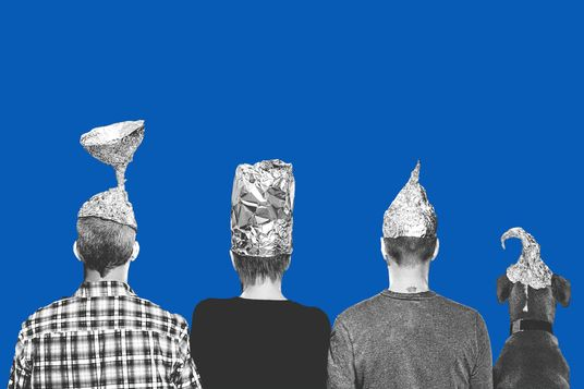 Three people and a dog with backs to camera wearing tin foil hats, with blue sky in the background.