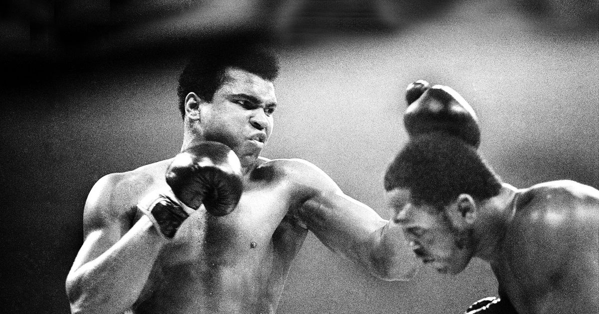 Muhammad ali essay introduction