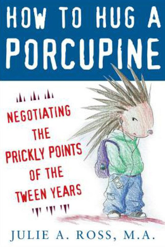 How to Hug a Porcupine by Julie A. Ross