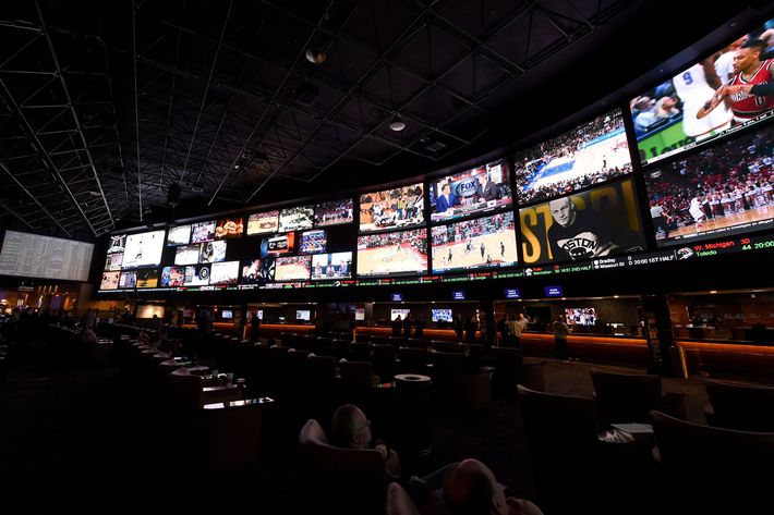 Least known olympic sportsbook