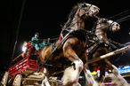 Budweiser Nixed Its Awesome Clydesdales in Favor of Whiny Millennials This Year