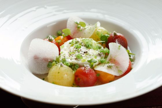 Tomato salad, tomato jelly, Lioni burrata, basil granité.
