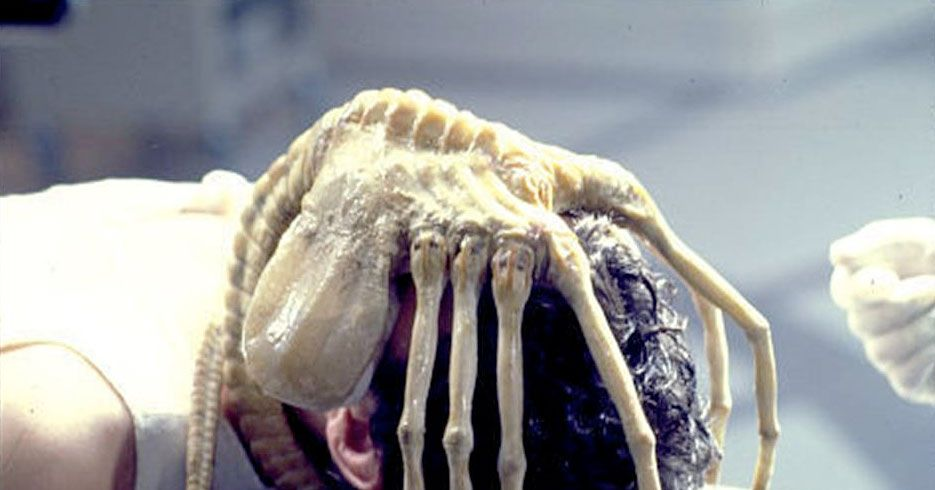 Prometheus Almost Had a Facehugger Scene -- Vulture
