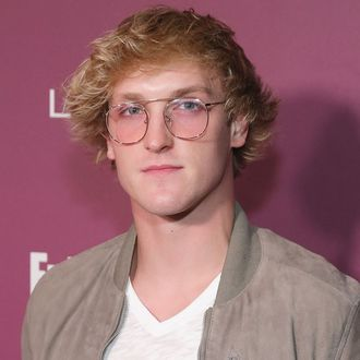finally other youtubers have publicly slammed logan paul