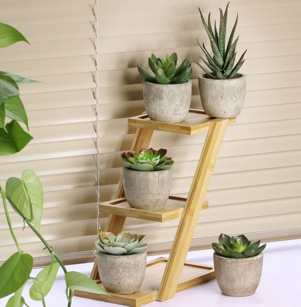 Winlyn Assorted Decorative Faux Succulent Plants with Gray Pots, Set of 5