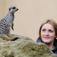 Zoo keeper Caroline Westlake poses for p