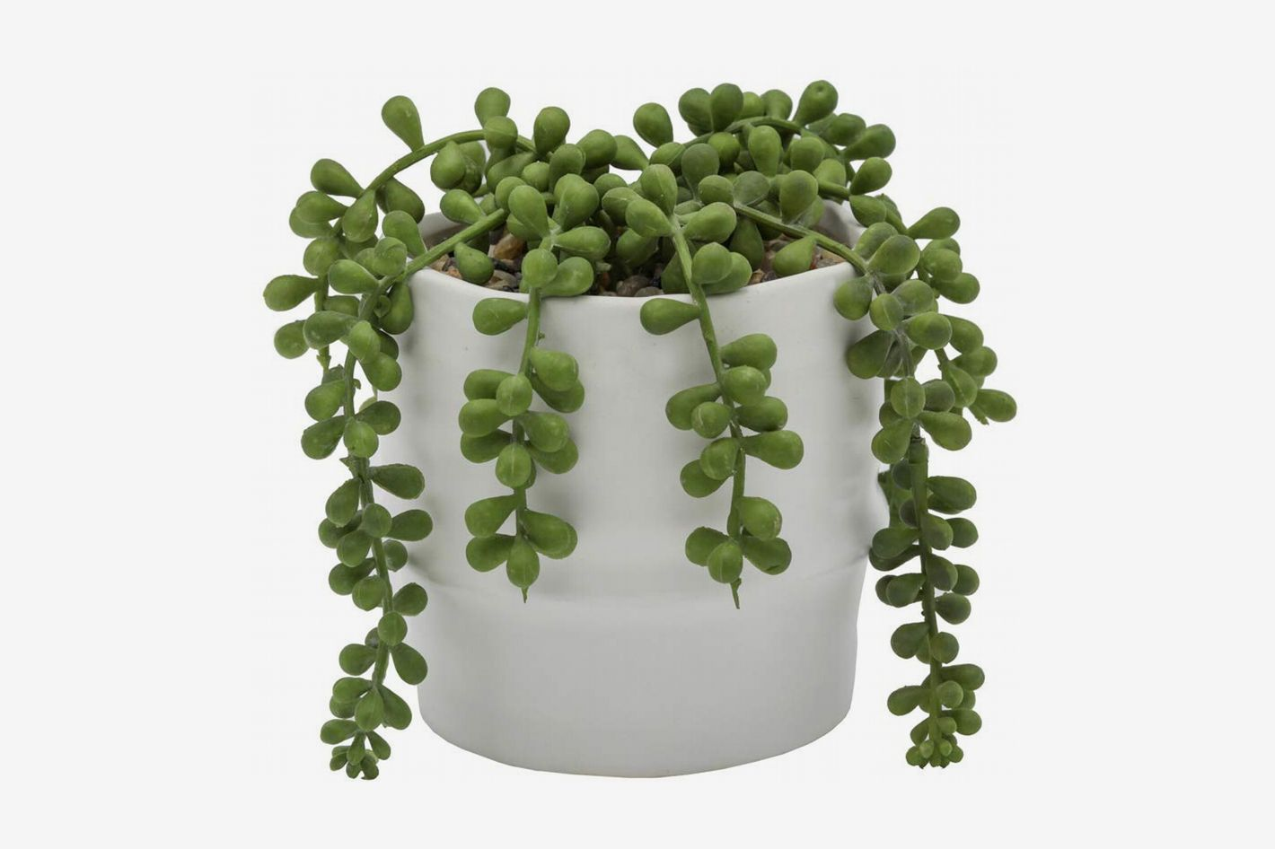 Flora Bunda String of Pearls