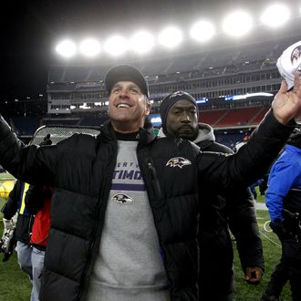 Head coach John Harbaugh of the Baltimore Ravens celebrates after defeating the New England Patriots in the 2013 AFC Championship game at Gillette Stadium on January 20, 2013 in Foxboro, Massachusetts. The Baltimore Ravens defeated the New England Patriots 28-13.
