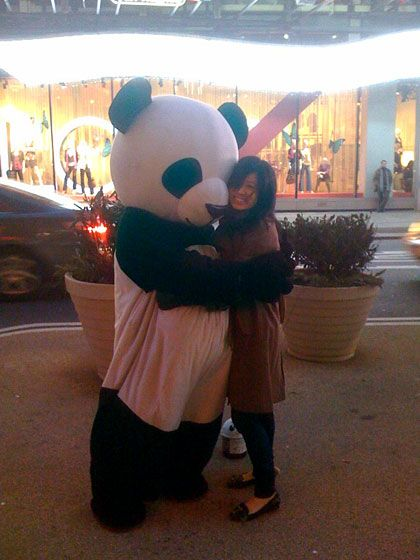 Sad Panda at Night & Sad Panda: The Story of an Obsession -- NYMag