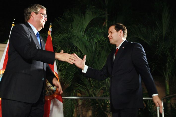 """CORAL GABELS, FL - NOVEMBER 02:  Republican nominee for Florida U.S. Senator Marco Rubio (R) is greeted by former Governor of Florida Jeb Bush during his """"Reclaim America Victory Celebration"""" at the Biltmore Hotel on November 2, 2010 in Coral Gables, Florida. Results show that Rubio has clinched the Florida Senate seat against his opponents, Independent candidate and Florida Gov. Charlie Crist and Democratic candidate Rep. Kendrick Meek (D-FL).  (Photo by Joe Raedle/Getty Images) *** Local Caption *** Marco Rubio;Jeb Bush"""