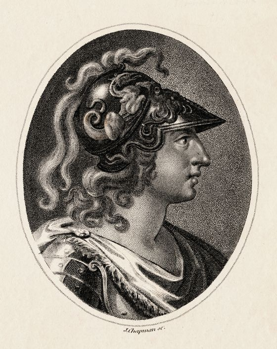 "When Alexander the Great passed suddenly after a quick and debilitating illness, many of his different kingdoms reacted strongly to his death. Sisygambis, a woman in Alexander's court, <a href=""http://www.pothos.org/content/index.php?page=sisygambis-his-mum"">starved to death</a> out of grief. Subjects of an <a href=""http://books.google.com/books?id=ApzbQNITyPcC&pg=PA320&lpg=PA320&dq=%22shaved+their++heads%22+alexander+the+great&source=bl&ots=HaoyEAQy0D&sig=oUWoIUPLPeCXUz5M5bLDpBzBJEU&hl=en&sa=X&ei=IHgSUaaNEqH20gGZ34G4Cg&ved=0CEcQ6AEwAw#v=onepage&q=%22shaved%20their%20%20heads%22%20alexander%20the%20great&f=false"">entire kingdom shaved their heads</a> as a sign of despair. Alexander himself was eventually laid to rest in a <a href=""http://www.history.com/this-day-in-history/bc-alexander-the-great-dies."">golden coffin</a>."