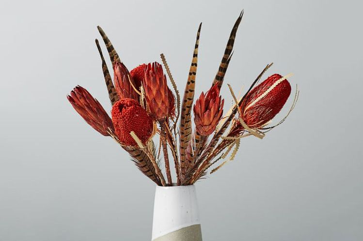 Metaflora Dried Red Banksia + Protea + Feathers Bouquet