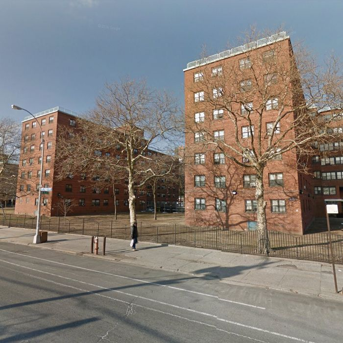 Nyc Housing Gov: This NYC Housing Project Works. What's Different Here?
