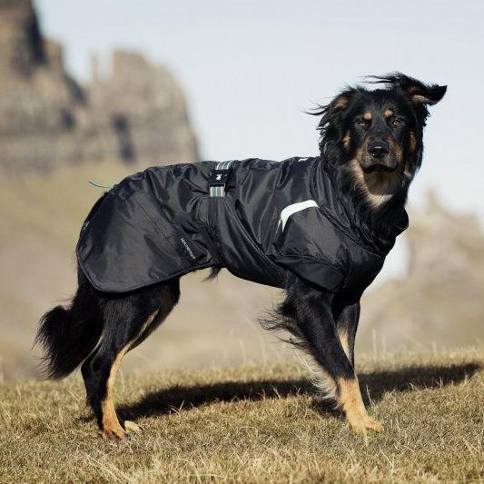 Hurtta Summit Insulated Dog Parka