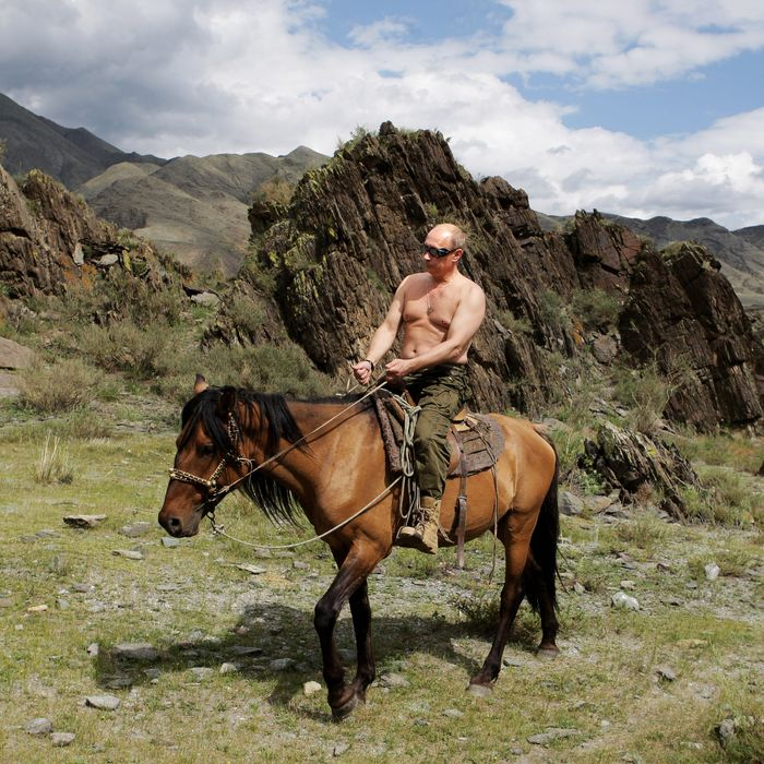 Russian Prime Minister Vladimir Putin rides a horse during his vacation outside the town of Kyzyl in Southern Siberia on August 3, 2009.